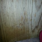Oil stains and food debris on the wall of the booth