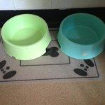 dog bowl in bedroom