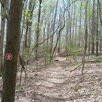 Lost Creek Overlook Trail