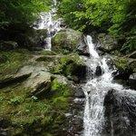 Dark Hallow Falls in Shenandoah National Park