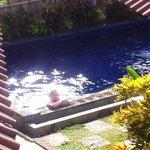 Heerlijk zwembad. Goed onderhouden en niet chlorig
