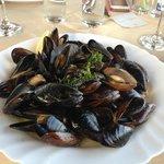 Black sea mussels