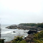 Views from the Wild Pacific Trail