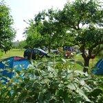 Photo of Aire Naturelle de Camping Le Verger