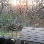View of sunset from the verandah