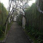 Resort walkway