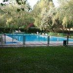 Estupenda piscina rodeada de verde