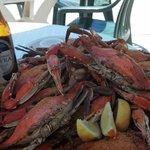 mound of crabs