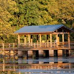 Pavilion at Brick Pond Park for viewing nature rain or shine.