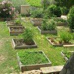 jardin de Christophe