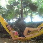 loved the hammocks everywhere