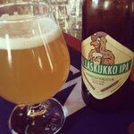 Mallaskukko IPA by Skands Brewery.