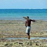 Fischer bei Ebbe