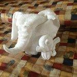 Éléphant et poussin
