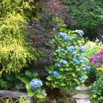 More exquisite gardens