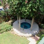 Hot Tub and Rear Garden