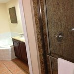Master bathroom, separate room with shower and toilet