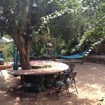 Outdoor area , complete with hammocks