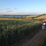 Fal Estuary views from one of the farmland walks