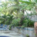 Mel's pristine pool