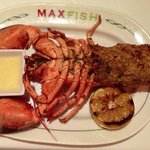 Broiled Stuffed Lobster.