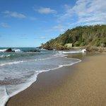 Charlesworth Bay Beach