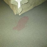 stained carpet near bed