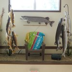walleyes and northerns above lobby