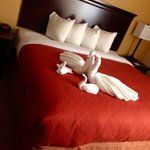 Country Inn & Suites By Carlson, Eagan Foto