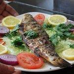 Irmak Grill's Delicious Seabass