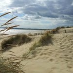 Nearby Camber Sands Beach (a few miles drive)