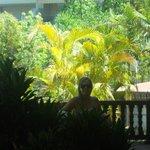 Los jardines bien cuidados del Hotel