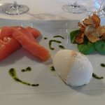 starter with sorbet from fromage blanc