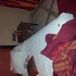 un locataire indésirable dans notre lit.