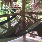 The comfy hammock on our porch