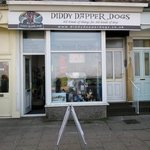 Diddy Dapper Dogs : All kinds of things for All kinds of dogs