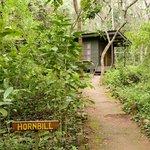 Budongo Eco Lodge_Exterior Cabin