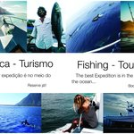 Fishing, Tourism, Dolphins, Boat Ride, Terceira, Azores, Portugal