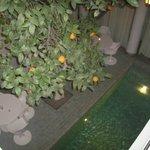 Ein Blick auf den Pool und eine Teil des Innenhofs