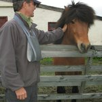 friendly encounter with an Iclandic horse