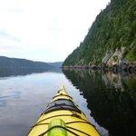 En pagayant sur le Fjord