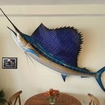 Marlin in the dining room