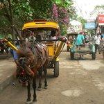 I mezzi di trasporto di Gili : i  cidomo!