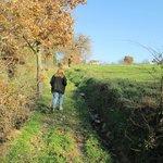 A walk on the Brigolante propery