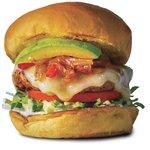 Hook's Bitro Burger