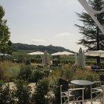 la terrasse avec vue sur les vignes