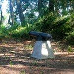 Fort Michel - cannon