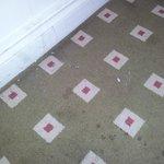Cigarette Ash in hallways?!?