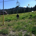 Ski hill next to lodge