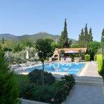 piscine de l'hotel et jardin